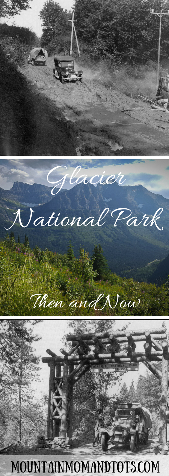Glacier Then and Now Pin