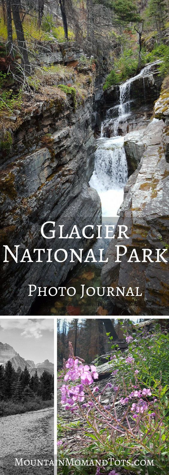 Glacier Photo Journal Pin