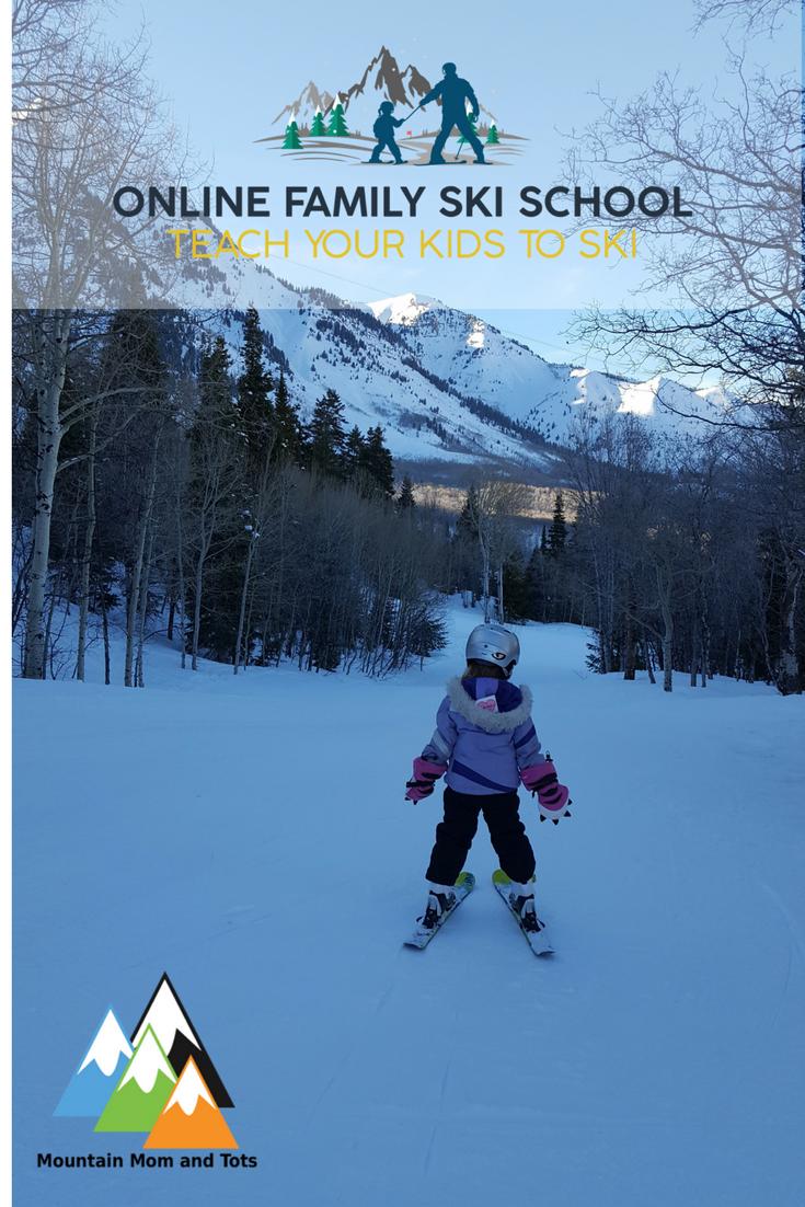 Online Family Ski School Pin